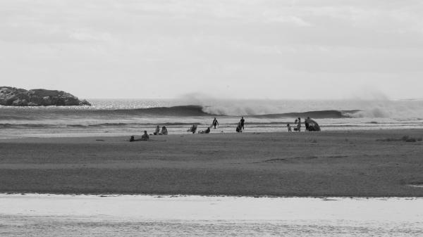 Surf 22