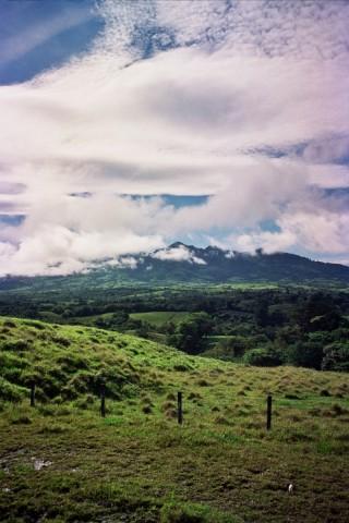 Landscape 36